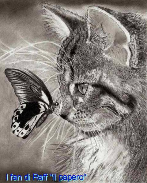 Inteligența și frumusețea animalelor-Galerie FOTO 4