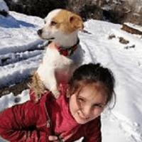 O fetiță de 9 ani din Turcia și-a cărat câinele în spate 2 kilometri pentru a ajunge la veterinar
