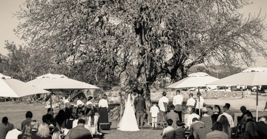 lorien-david_elana-van-zyl-overberg-swellendam-photographer-de-uijlenes-wedding-8037