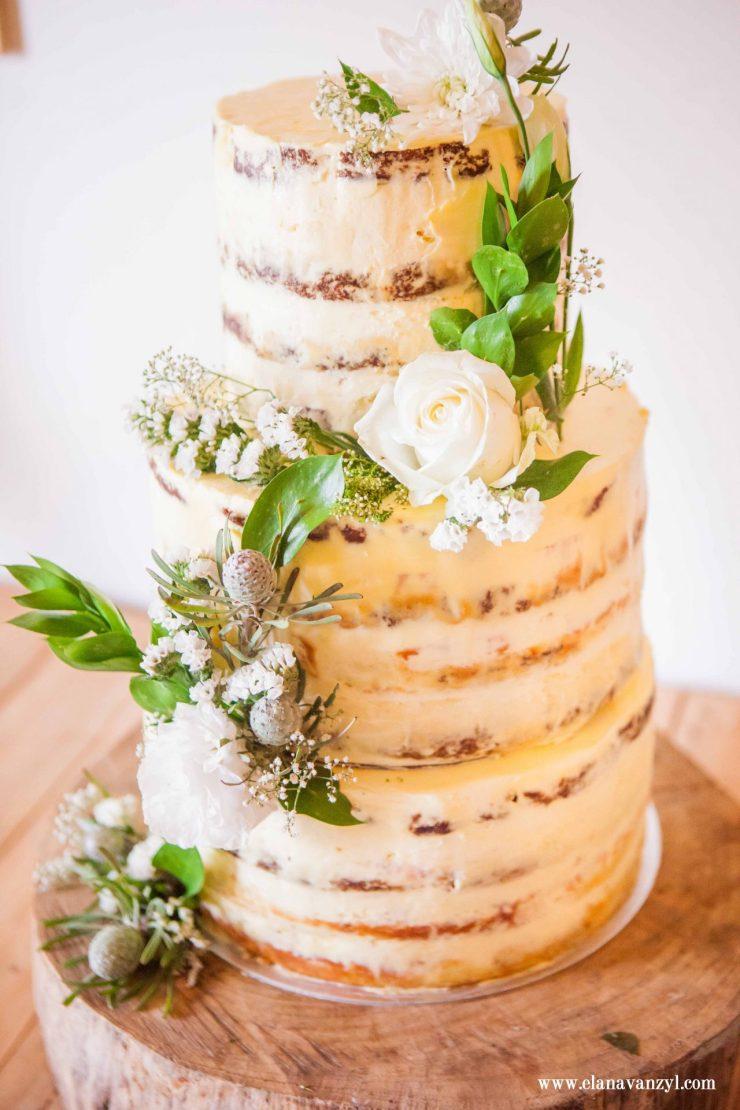 elisma_and_nelis_de_uijlenes_wedding_elana_van_zyl_photography-7111
