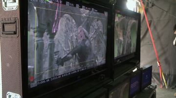 Thranduil lucha con los Orcos