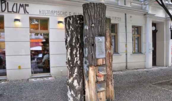 Book-tree3