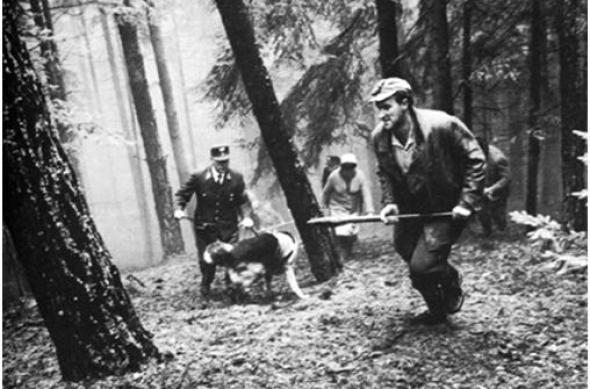 Fotograma de la película 'Escenas de caza en la Baja Baviera'.