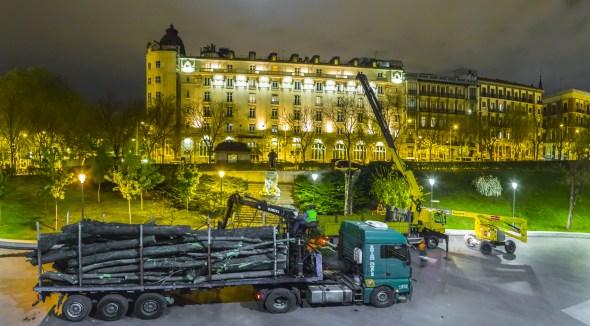 Camiones y grúas junto al Museo del Prado para retirar los troncos de los árboles talados. Foto: José Manuel Ballester.