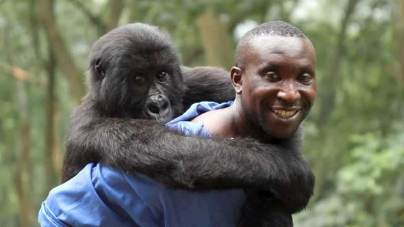 Un fotograma de la película Virunga.