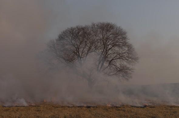 Imagen de la serie 'Chisa' realizada en Sudáfrica.