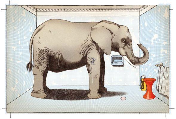 'La memoria del elefante'. Sophie Strady, ilustraciones de Jean-François Martin.