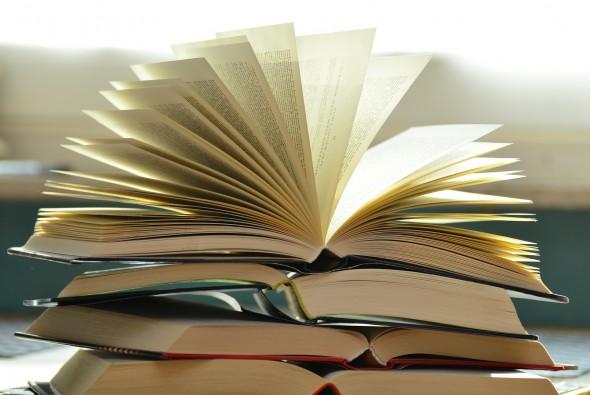 Libros. Foto: PIxabay.