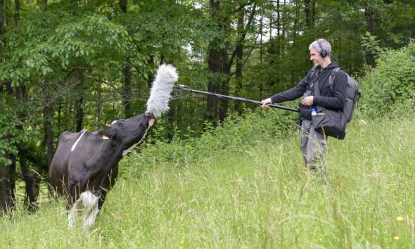 Un momento de rodaje de la serie en la ganadería Belate.