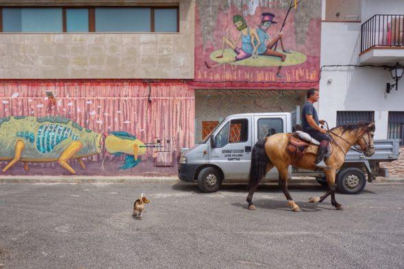 Un caballo por las calles de Fanzara. Foto: Manuel Cuéllar.