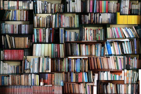 Una biblioteca. Foto: Jorge Mejía Peralta / Creative Commons.