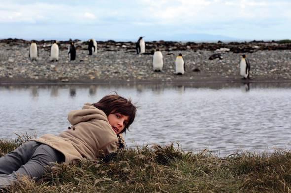 Un fotograma del documental 'El viaje de Unai' en el que se ve al pequeño observando pingüinos.