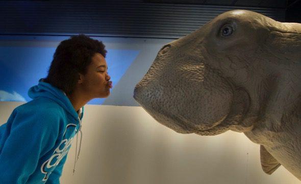Todo tipo de criaturas marinas en la exposición de los océanos en Madrid.