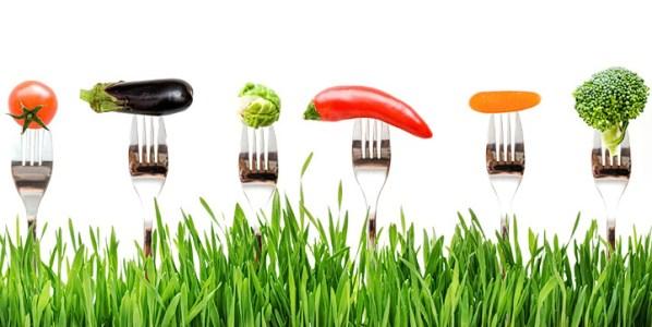 Alimentación ecológica. Foto: Creative Commons.