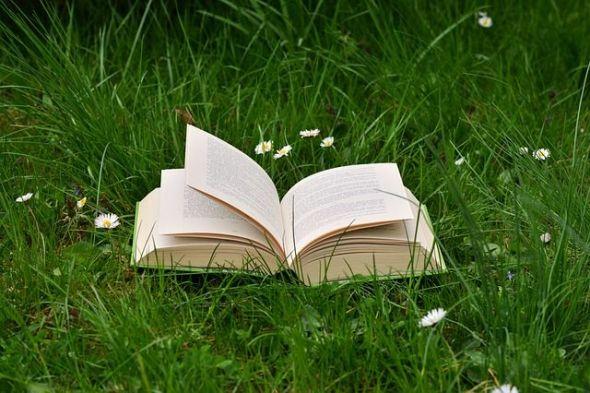 Escribiendo de naturaleza se pueden vender muchos libros. Foto: Pixabay.