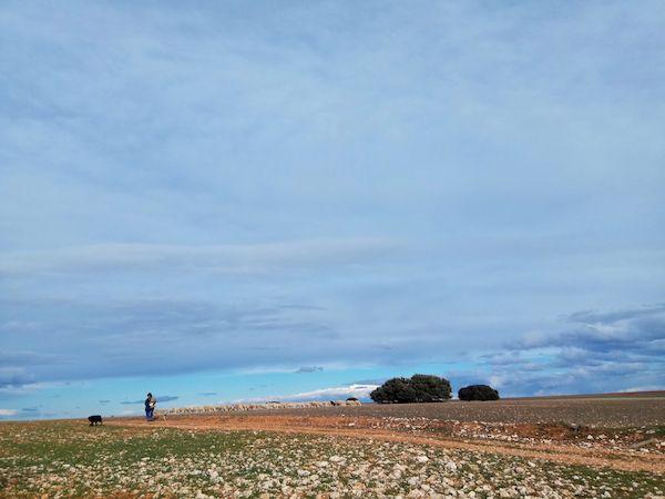La España vacía. Foto: A. Esteban.