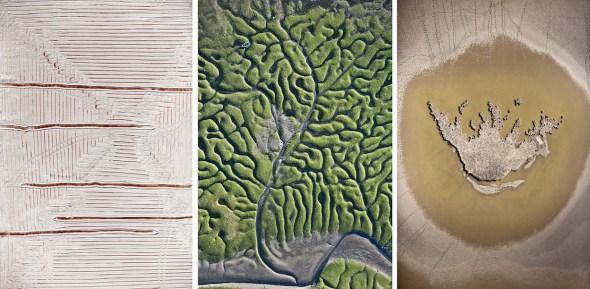 Tres fotografías de fractales en Doñana. Fotos: Héctor Garrido.