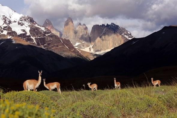 Parque Nacional de Torres del Paine en Chile. Foto: Andoni Canela.