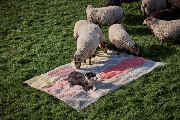 Colección de alfombras diseñada por Donna Wilson para Lorena Canals