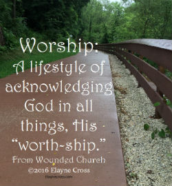 Cultivating a Worship Lifestyle