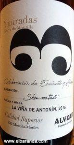Antoñin Skin
