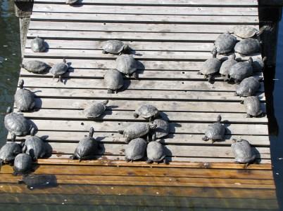 17-057-templo-shiitenno-ji-osaka