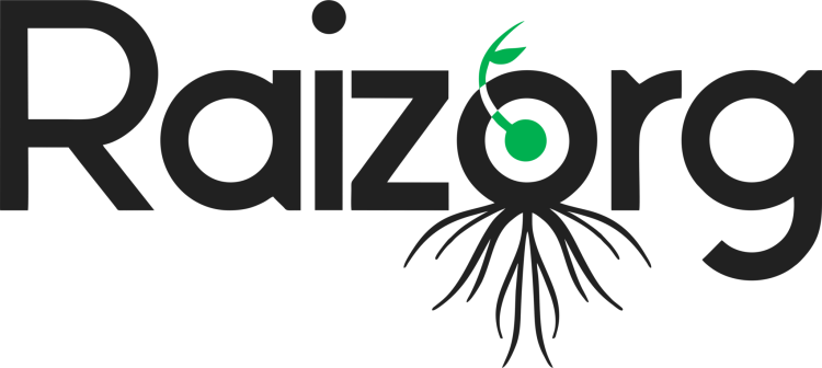 RAIZORG Logo