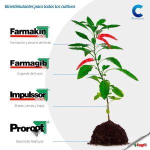 bioestimulantes para cultivos