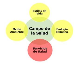 Versión resumida de los cuatro determinantes sociales de la salud