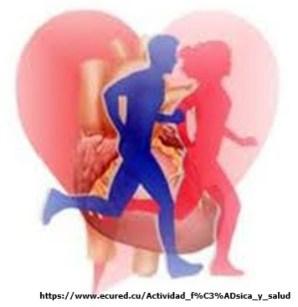 Actividad física para la vida