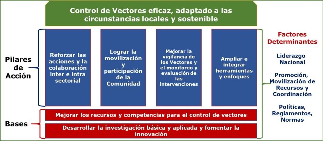 Control de vectores: elimina los criaderos de mosquitos