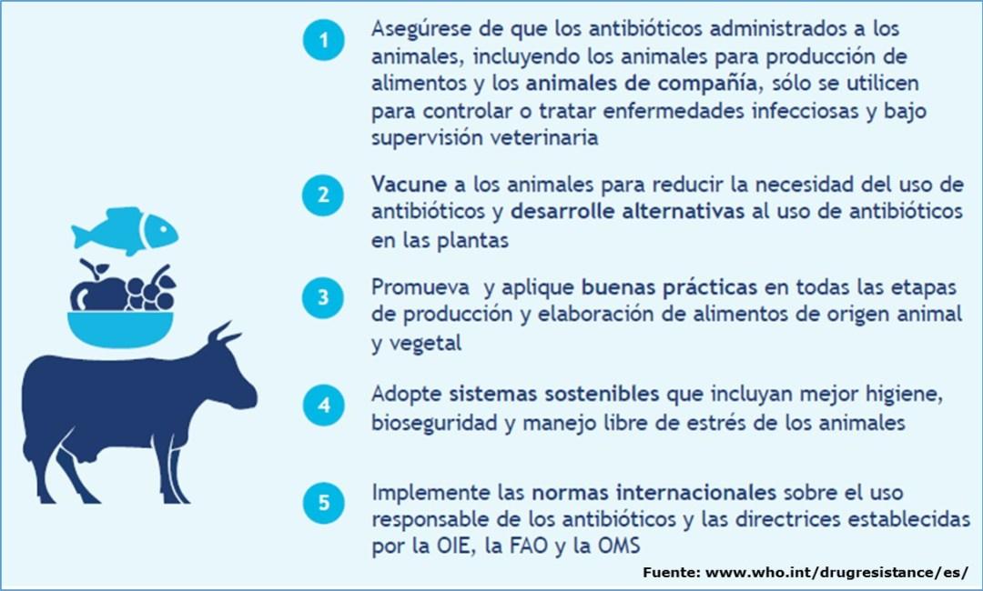 Recomendaciones al sector agrícola para evitar la resistencia a los antibióticos