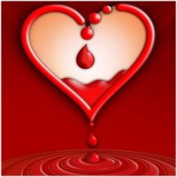 Dona sangre y comparte vida: ¡es un acto solidario!