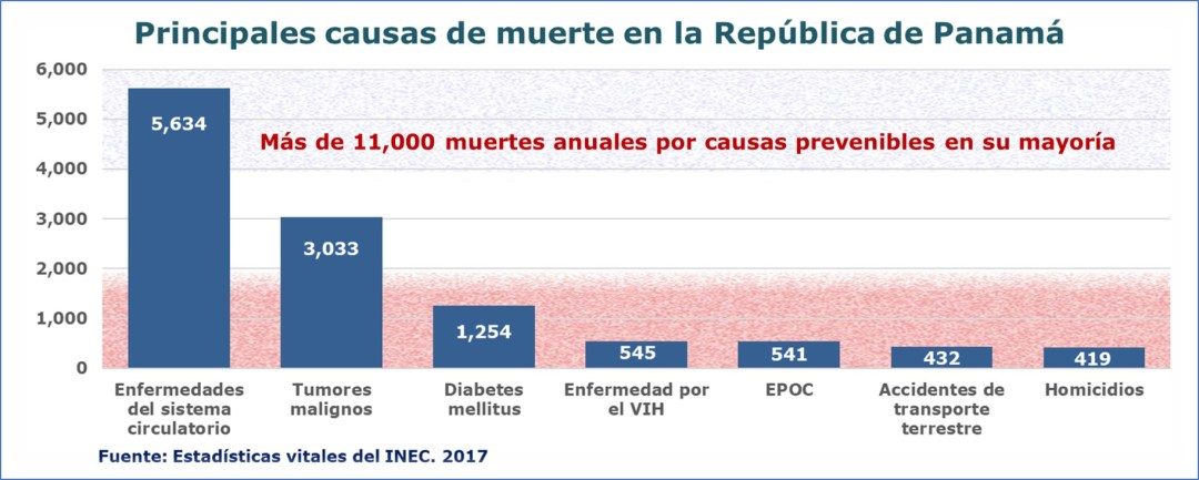 Principales causas de muerte 2017a