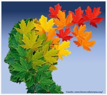 Vida sana para reducir el riesgo de padecer demencia
