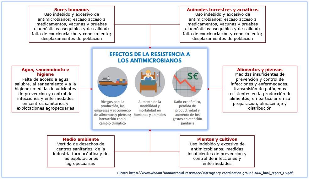 """Resistencia a los antimicrobianos: enfoque de """"una salud"""""""