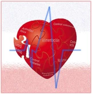 Enermedades del sistema circulatorio