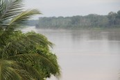 Vista río Beni (Riberalta, 2013)