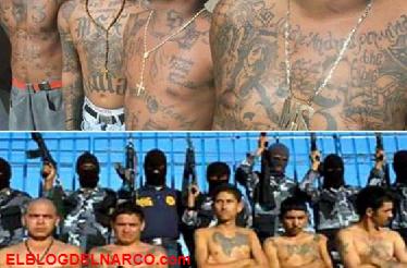 Artistas Asesinos y Los Mexicles, ¿se avecina una guerra en el Cártel de Sinaloa