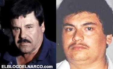 El Guano es el otro Guzmán que busca controlar al Cártel de Sinaloa