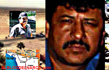 El Macho Prieto era un sicario tan temido, que el Mayo y El Chapo prefirieron ejecutarlo por sus excesos