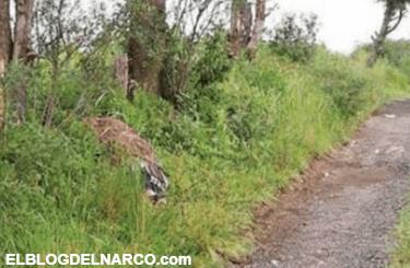 Hallan 2 cadáveres en bosque de Tlalpan