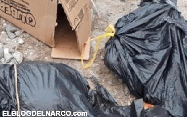 Encuentran cuerpo descuartizado junto a vías del tren en Ecatepec