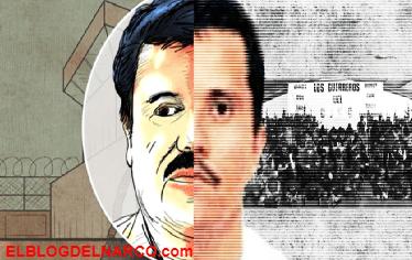 Sanguinarios y violentos, las aterradoras similitudes entre El Chapo y El Mencho