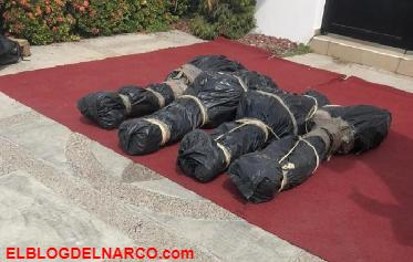 La macabra decoración de Halloween de una casa en Sinaloa inspirada en ejecuciones narco