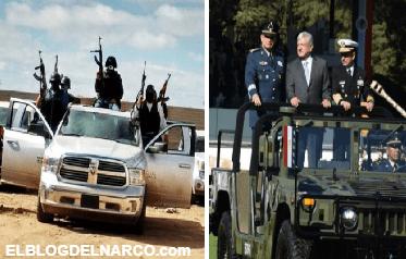 Revelan estrategia de la Guardia Nacional de AMLO para combatir al narco