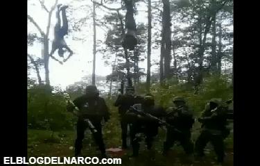 Vídeo letal al estilo de depredador donde sicarios cuelgan a varios contra de Cartel del Sur y luego comienza a dispararle...