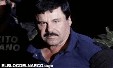 """""""Que no queden ni los huesos"""", El Chapo tras torturar y ejecutar a dos narcos de Los Zetas"""