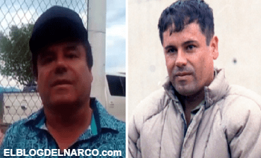 Destapan cómo era la vida de El Chapo en las montañas mientras estaba prófugo