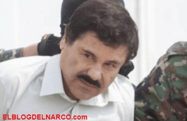 """La desconocida amante de """"El Chapo"""" espiada por México y EEUU"""